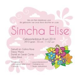 simcha3